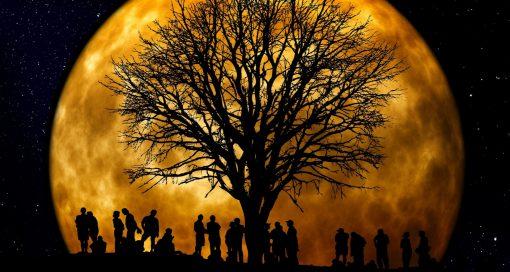 Event - Magisch, Dunkel, Vollmond-Nacht – Das mystische Bier-Event mit Bruder Albertus