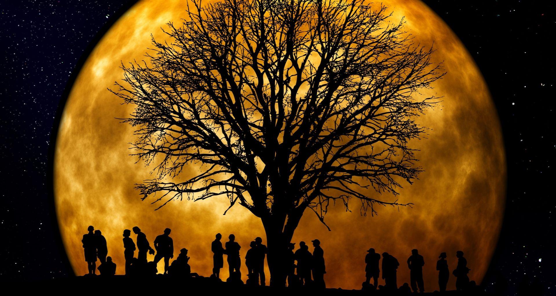 Top Event - Magisch, Dunkel, Vollmond-Nacht – Das mystische Bier-Event mit Bruder Albertus
